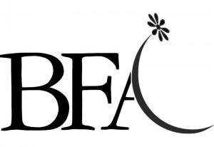 DK Dennis Kneepkens flower interiors hotels logo BFA